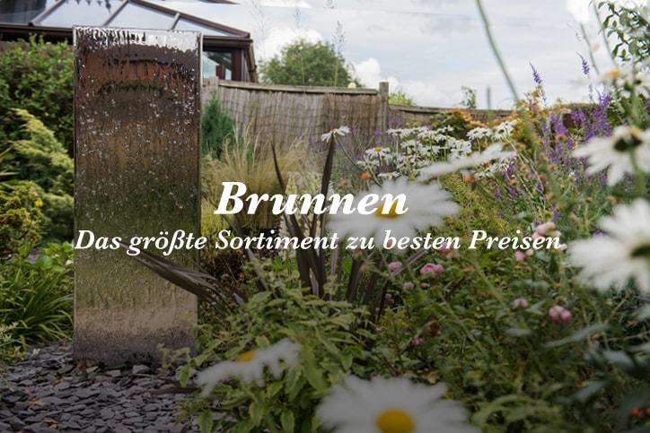primrose garten seit 12 jahren ihr gartenh ndler